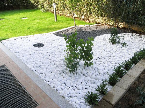 Produzione vendita e piantumazione di piante ornamentali for Pietre bianche da giardino prezzo
