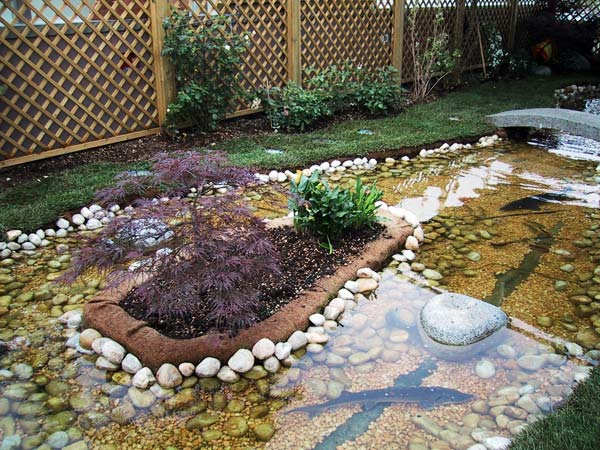 Produzione vendita e piantumazione di piante ornamentali for Immagini di laghetti artificiali